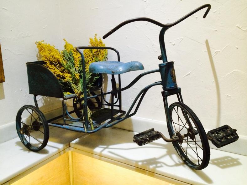 Para ellos el medio de transporte es el triciclo