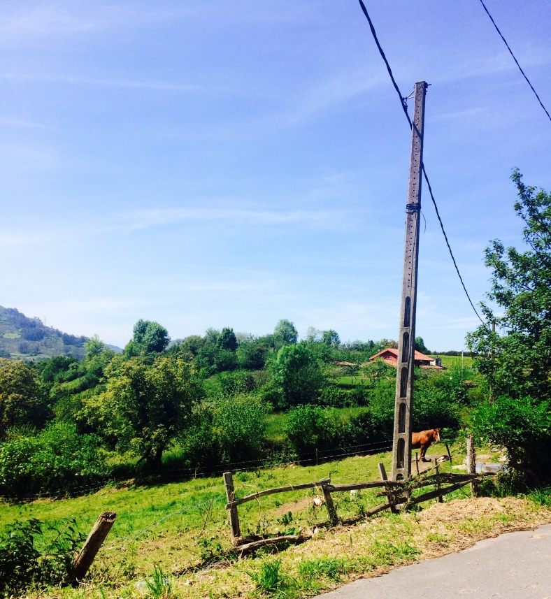 ¡¡¡Qué bonito es Asturias!!!